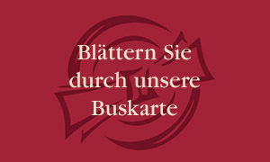 rote-flaeche-teller-serviette-300